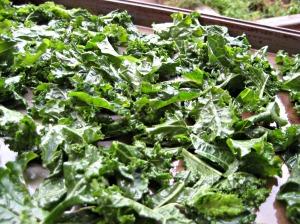 Gluten Free Kale Chips (Espinosa Kitchen)